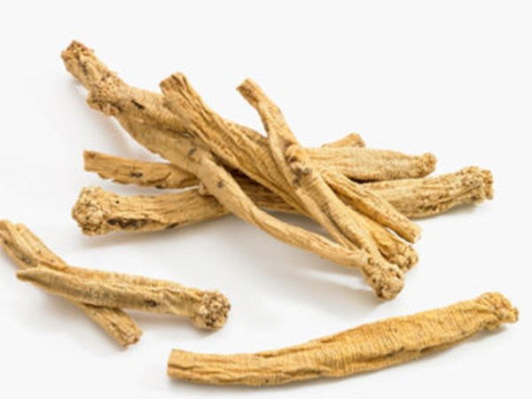 Codonopsis Extract