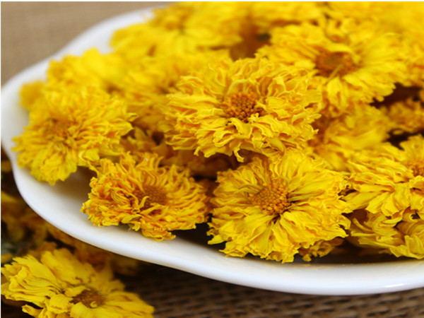 Instant Chrysanthemum Powder